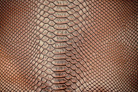 huella animal: Cierre de lujo de la serpiente textura de la piel utilizar para el fondo