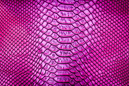 Pink luxury snake skin texture use for background Stock Photo