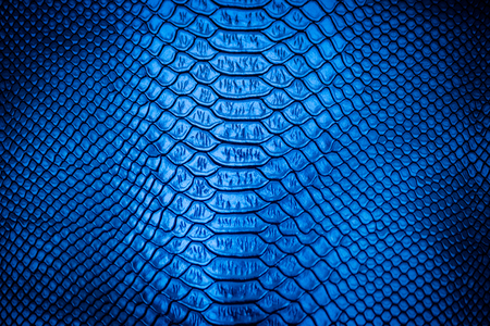 Blue leather texture  use for background