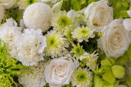 roses and white chrysanthemum fresh flower background