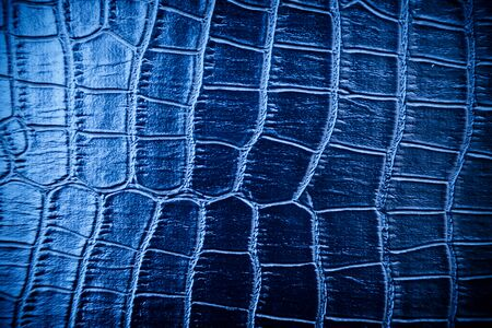 Bllue skin leather texture use for background