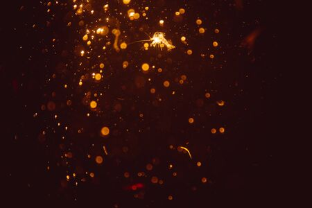 Abstract gold defocus bokeh glitter vintage lights with black background