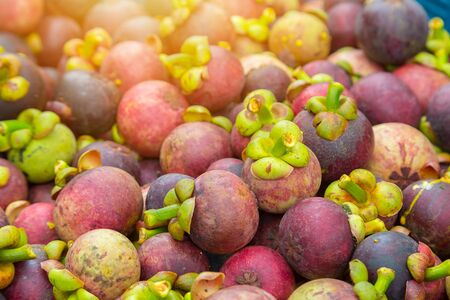 Mangosteen Thai fruits is on sale in the market Stock Photo
