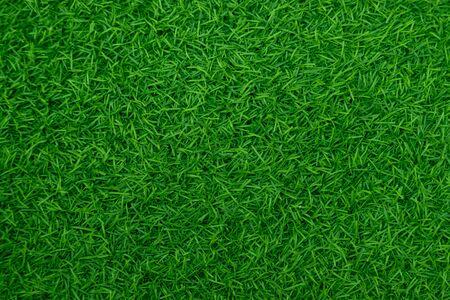 Grüner Kunstrasen natürlich