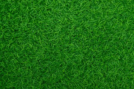 Zielona sztuczna trawa naturalna