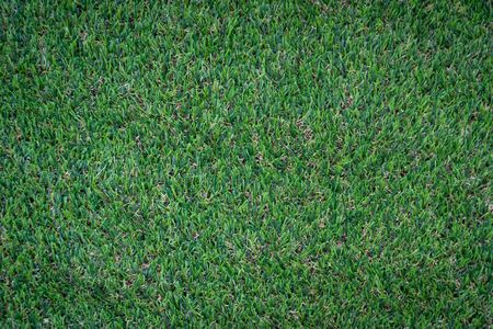 Green artificial grass floor nature background