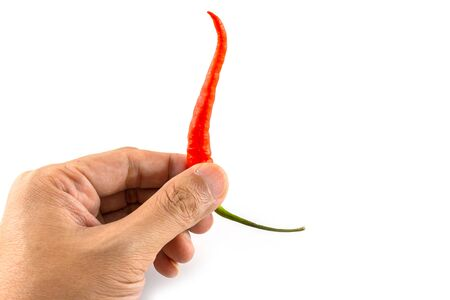 Isolated of hand picking up a fresh red chilli on white background