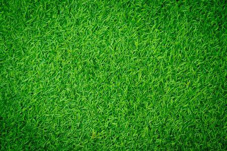 Green artificial grass natural background