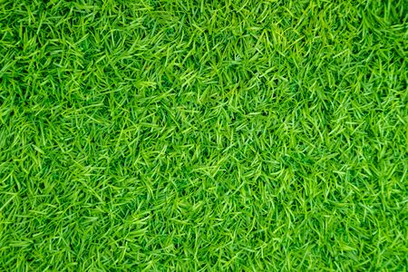 Green artificial grass natural