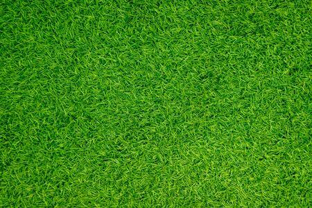 Gazon artificiel vert naturel Banque d'images