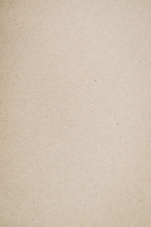 Old brown paper texture use for background 免版税图像