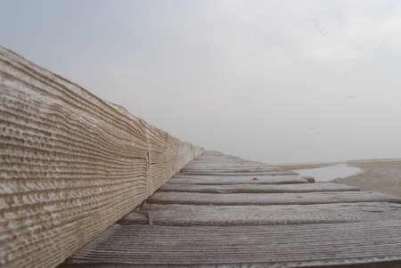 dock: pier