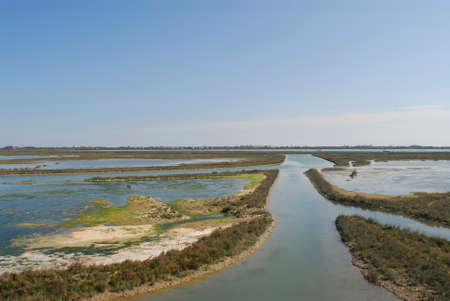 venice: Venice lagoon Stock Photo