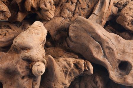 Decorative driftwood for aquarium