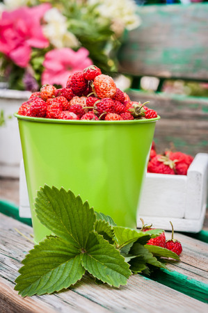 strawberries in a bucket