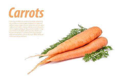Carrots on white Stockfoto
