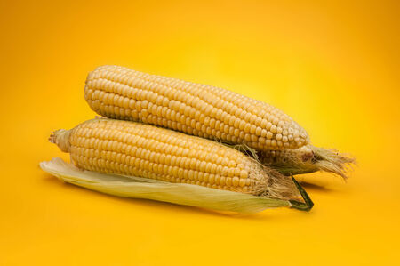 Corn on yellow