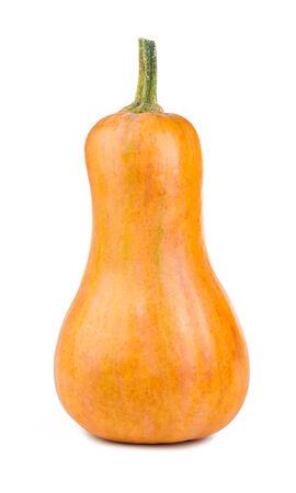 Pumpkin isolated on white background Stockfoto