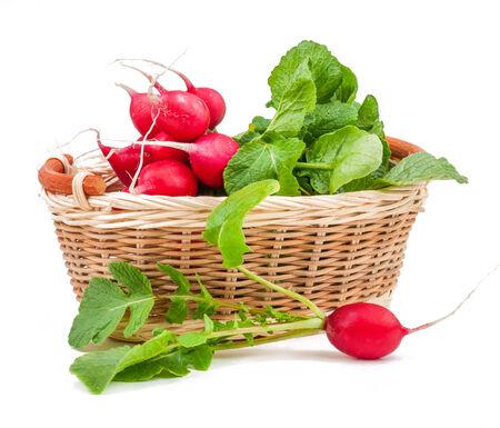 radish isolated on white background