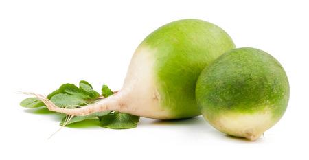 dikon: r�bano verde aislado en el fondo blanco Foto de archivo