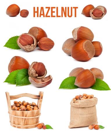 set of six compositions hazelnut isolated on white background Stock Photo
