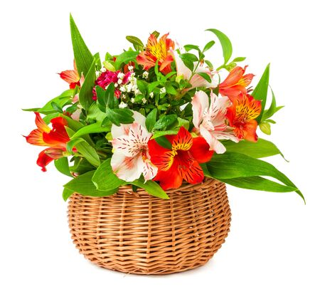 bouquet alstroemeria in basket isolated on white background