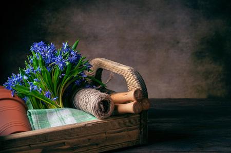 bifolia in the box garden tool on dark background
