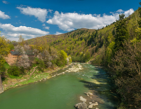carpathian: Carpathian mountain rivers