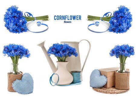 mix cornflower bouquet isolated on white background photo