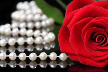 elegant rose with pearls on a black background Stock Photo