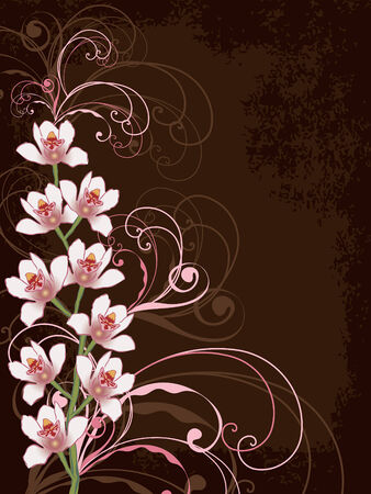 white orchids with pink swirls and grunge frame Vector