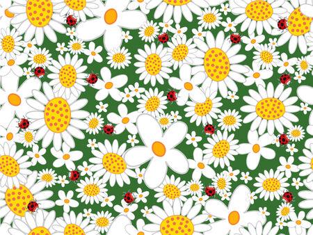 Marguerites blanches et des coccinelles (vecteur) - sans couture motif carrel�