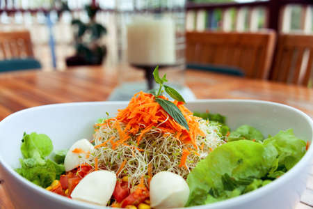 Green healthy salad with cheese tomato and lettuce.