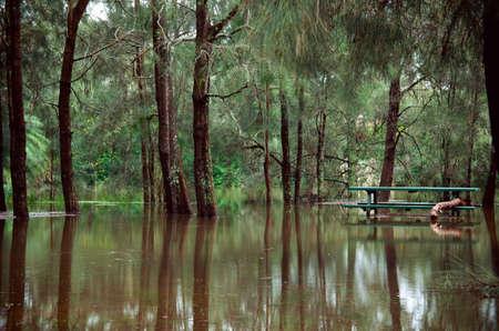 Flood at Sydney North Beach cost by whole week of rain.