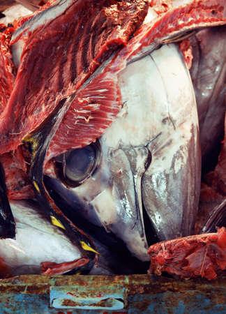 Japan sea food market