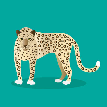 Jaguar on a green background. Animals of South America.