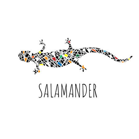 Vector salamander in graphic style. Mosaic style lizard made of black and colored pieces.