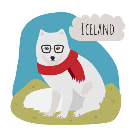 Fashion arctic fox with glasses and scarf from Iceland in a green meadow. Arctic animals. Banco de Imagens - 153446541