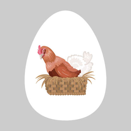 The chicken in realistic style is sitting in the nest. The hen is incubating eggs. Chicken in a basket. Banco de Imagens - 153843379