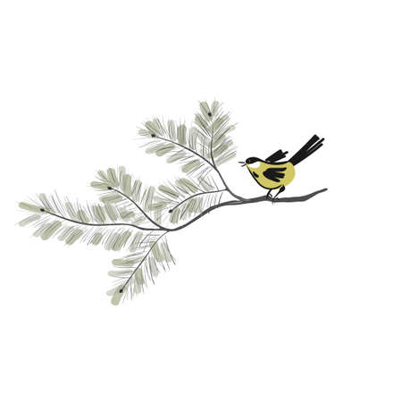 Tomtit in japanese style are sitting on the pine tree. Yellow birds perched on branches