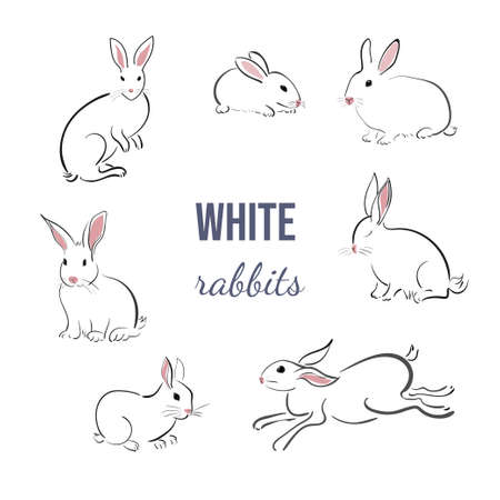 Set of white rabbits in japanese style on a white background. Bunnies in different poses in simple style. Animal sketch.