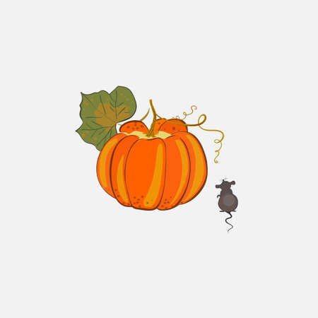 Orange pumpkin in hand drawn style with little mouse.