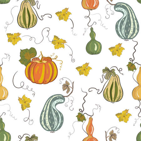 Seamless vector pattern with colorful pumpkins in hand drawn style.