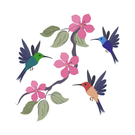Three colored hummingbirds and a branch and with flowers.