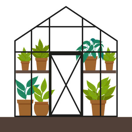 Vector flat illustration with a greenhouse. Different plants in the greenhouse. Ilustração