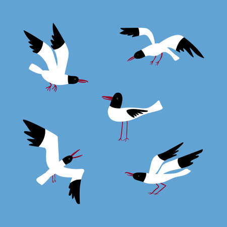 Vector set with seagulls in different poses isolated on a blue background.