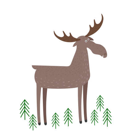 Vector scene with moose in the forest. Elk stand isolated on a white background. Illustration in hand drawn style.