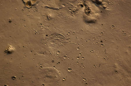 Mud with craters