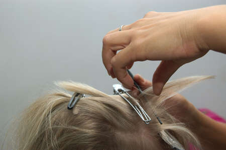 Hairdressing Stock Photo - 3103170