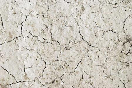 arid: Arid mud